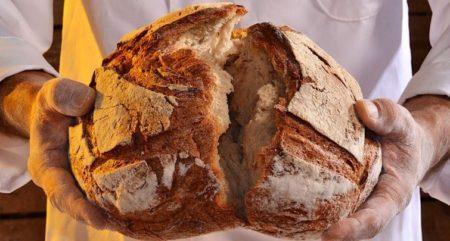 Kruh života