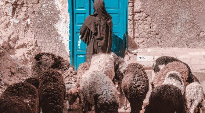 Ja sam vrata ovcama